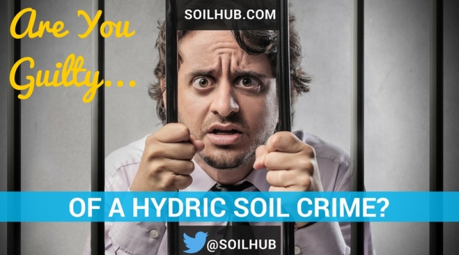 Are You Guilty of a Hydric Soil Crime?